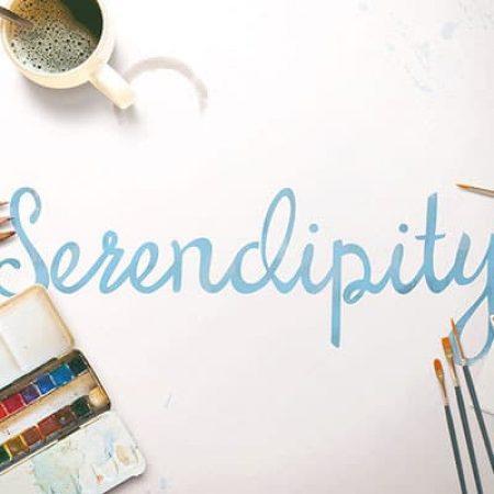 Photography / Branding