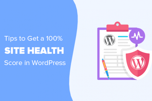 12 Tips to Get a 100% in WordPress Site Health Check Score (Easy)
