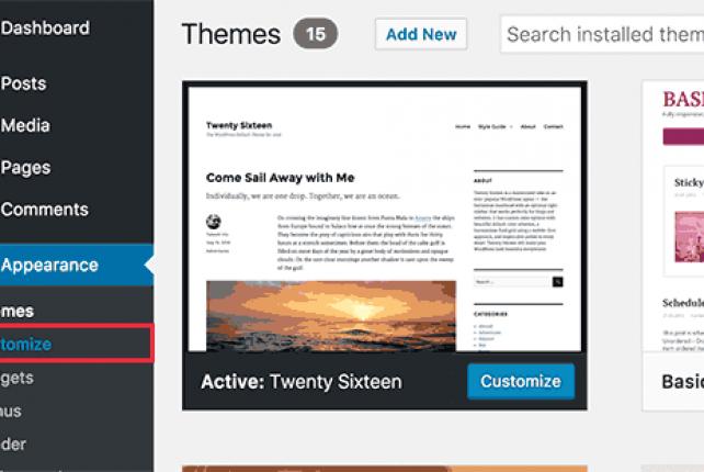 WordPress use custom CSS – Easy Way