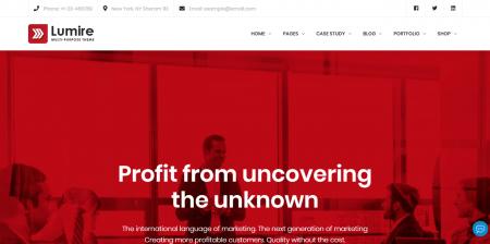 Business WordPress Website - Lumire