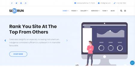Seorun - SEO Agency WordPress Theme