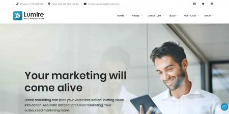 High Downloaded Business WordPress Website