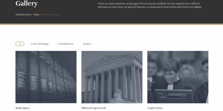 Popular Lawyer & Attorney WordPress Theme